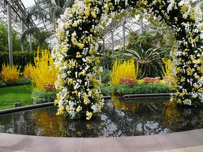 Longwood Gardens Orchids & Winter Blues