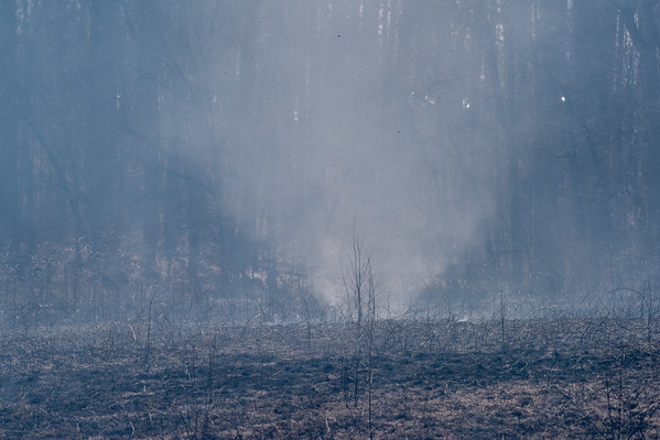 2018 Controlled Burn in the Meadow