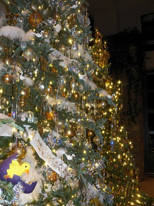 Fairytale Christmas trees, near the Green Wall
