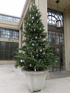 Christmas tree at the entrance to the East Conservatory
