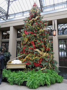 East Conservatory Christmas tree