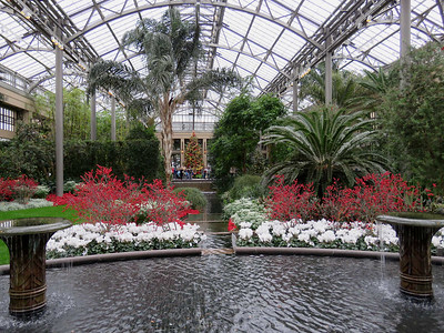 view from the entrance to the East Conservatory