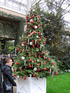 Christmas tree near the entrance to the East Conservatory