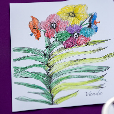 2-18-19 Children's Colorings - Longwood Gardens-5220