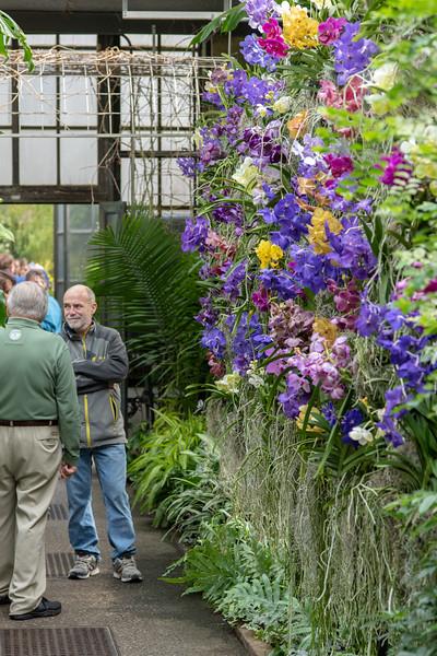 2-18-19 Tropical Terrace - Longwood Gardens-5170