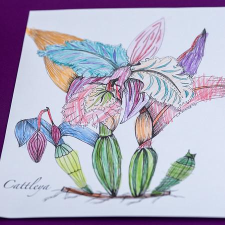 2-18-19 Children's Colorings - Longwood Gardens-5219