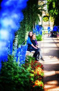 longwood lg flowers blue milla annie pm