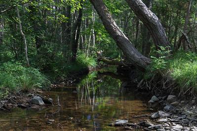Vesiku stream, Saaremaa
