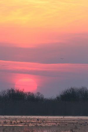 Päikesetõus Räpina poldril