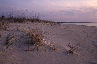 Liivarand Perakülas (Nõva), Sandy coast in Nõva, Estonia