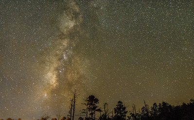 Milky Way Galaxy Stephen C Foster Okefenokee Swamp