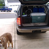 Gus supervising the loading of the car...
