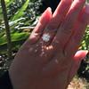 3.01ct Antique cushion Cut Diamond Est S/T Color, VS2 Clarity 30
