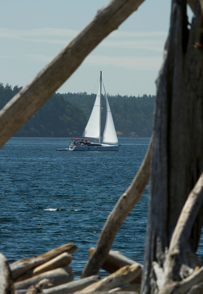 A Jeanneau sails south in Lopez Sound, passing Spencer Spit and piles of drift wood.