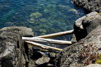 Driftwood Above Hghitide