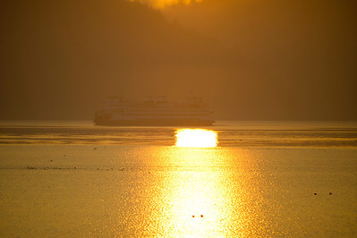 A northbound Washington State ferry cuts across the reflection of the early sun.