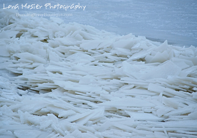 White Chocolate Ice by Lora Mosier<br /> <br /> This is what happens when Lake Erie freezes a thin-ish layer and then thaws enough for the waves to take over and then freezes again. <br /> <br /> On Groundhog Day I took some scraps out to the bluff for the varmints and these shards-o-ice made up the shoreline as far as I could see to the west and the east.