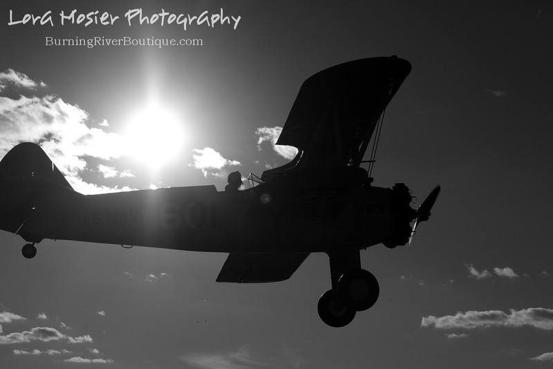 Flying Solo by Lora Mosier<br /> <br /> This was taken at Thacker Field during the Metro Warbirds hog roast.
