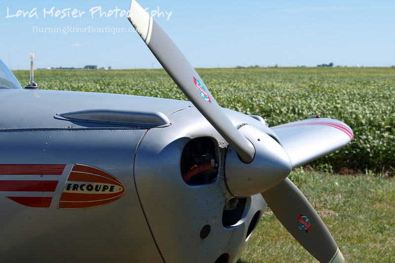 Field of Dreams by Lora Mosier<br /> <br /> This was taken at Thacker Field during the Metro Warbirds hog roast.