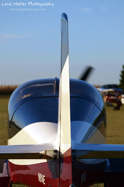 That's a Tall Tail by Lora Mosier<br /> <br /> This was taken at Thacker Field during the Metro Warbirds hog roast.