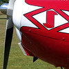 Nosey Rosey by Lora Mosier<br /> <br /> This was taken at Thacker Field during the Metro Warbirds hog roast.