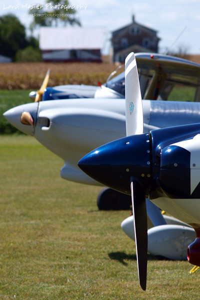 Don't Be So Nosey by Lora Mosier<br /> <br /> This was taken at Thacker Field during the Metro Warbirds hog roast.