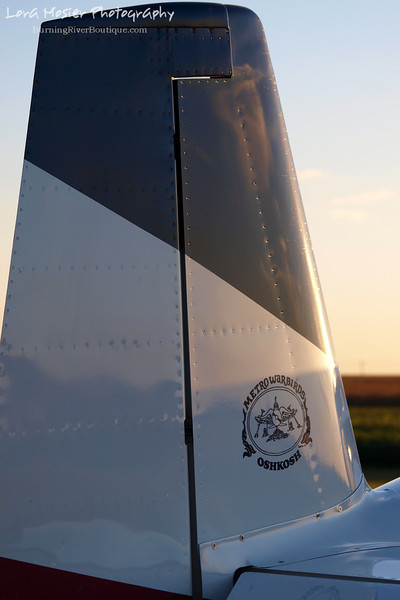 Wingin' It by Lora Mosier<br /> <br /> This was taken at Thacker Field during the Metro Warbirds hog roast.