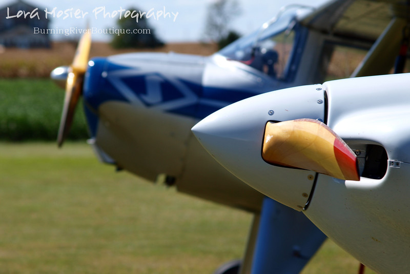 Get To the Point by Lora Mosier<br /> <br /> This was taken at Thacker Field during the Metro Warbirds hog roast.