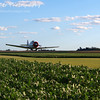 Crop Dusting by Lora Mosier<br /> <br /> This was taken at Thacker Field during the Metro Warbirds hog roast.