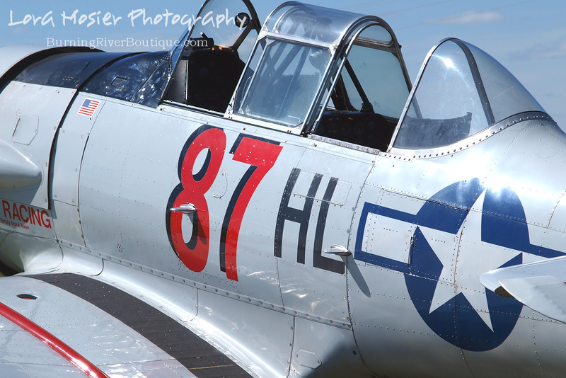Rick's Texan by Lora Mosier<br /> <br /> This was taken at Thacker Field during the Metro Warbirds hog roast.