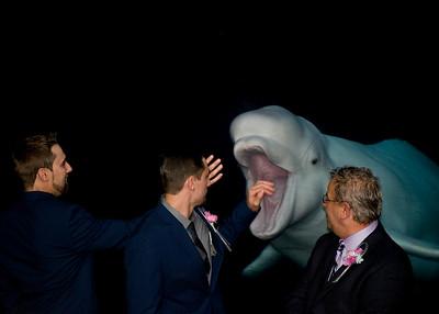 Lori & zinger's Wedding @ Mystic Aquarium