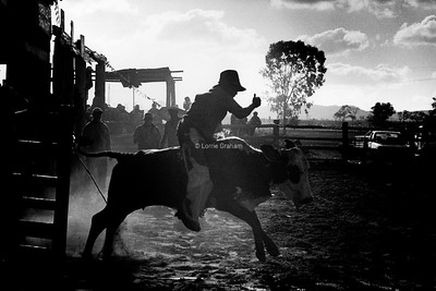 INDIGENOUS : Hopevale Rodeo 2003 Photo Essay