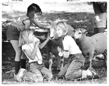 Petting sheep at Deer Hollow Farm in 1982.The ranch was established by the Grant Brothers, Frank and George, in 1853.