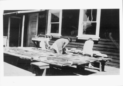 Furinko, Masaka and Yoneko Kagawa are sorting books outside the Japanese School that was located on Furuichi property (site of today's Los Altos Nursery) in the  1920's.