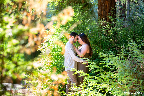 Carbon Canyon Regional Park La Brea Orange County Engagement Session Photographer