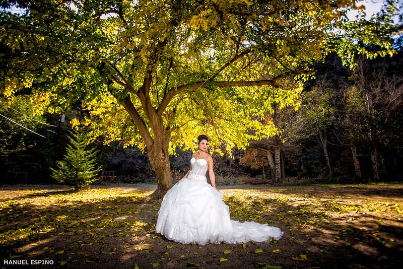 Los Angeles Bride Wedding Photographer Manuel Espino