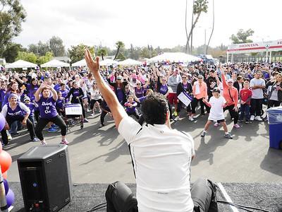 2013 Los Angeles Walk Photos