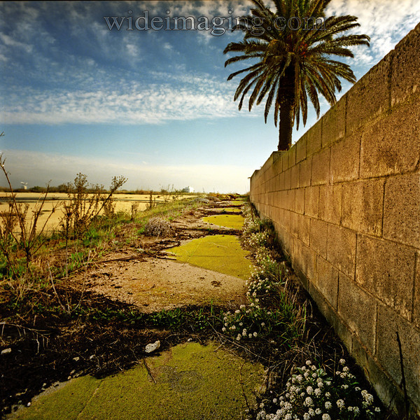 Los Angeles Airport buildings in the distance, with a plane taking off. Sidewalk with moss growing around an unexplained figure eight and the property wall of a long gone house on the corner of Ipswich Street and Trask Avenue: Playa Del Rey, Ghost Town, from October 10, 2000.