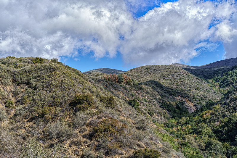View of The Pines camp from below on the Horn Canyon trail. November 9, 2015