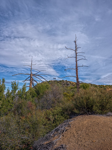 Approaching the Nordhoff fire lookout from the west. Feburary 4, 2014.