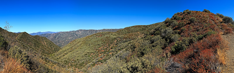 View North to Pine Mountain from Nordhoff Ridge, Southern Los Padres National Forest. September, 2010.