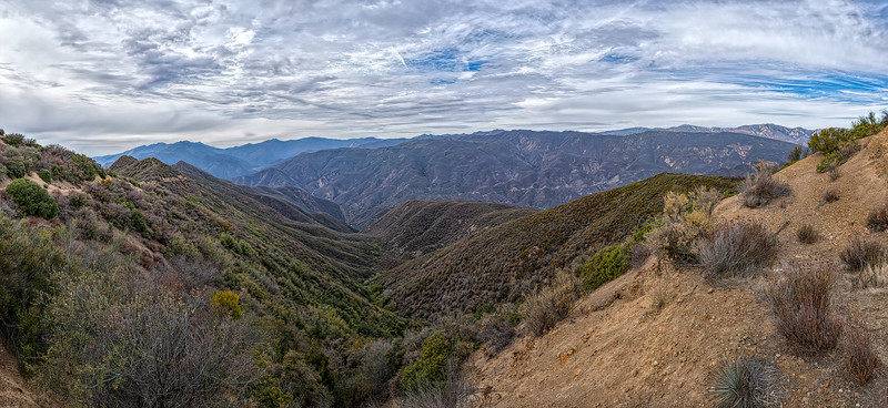 View north to Pine Mountain from Pratt trail - Nordhoff Ridge fire road junction, February 4, 2014.