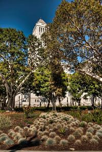 city-hall-garden-1