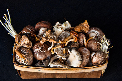 basket-mushrooms-1