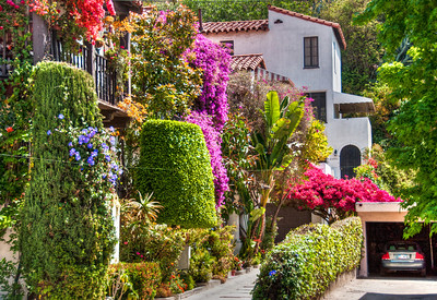 house-garden-1-2
