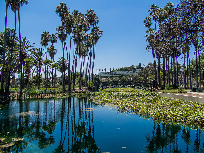 Echo Park: Northern Part of Lake and Island