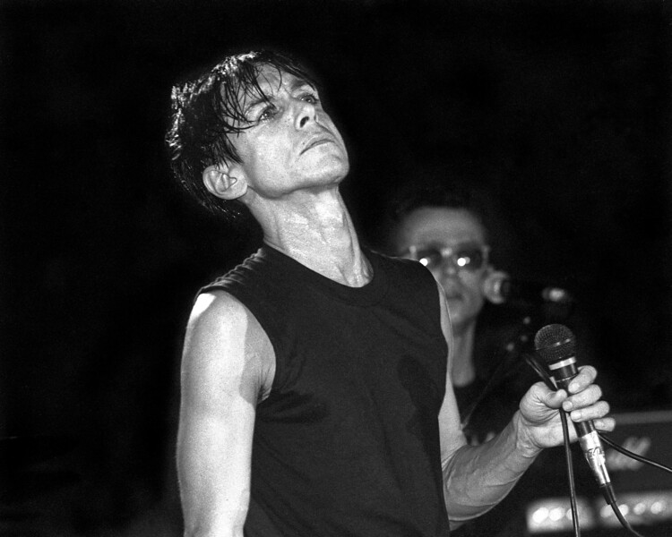 SAN FRANCISCO, CA-OCTOBER 31: Iggy Pop performs at Wolfgang's in San Francisco on October 31, 1986. (Photo by Clayton Call/Redferns)