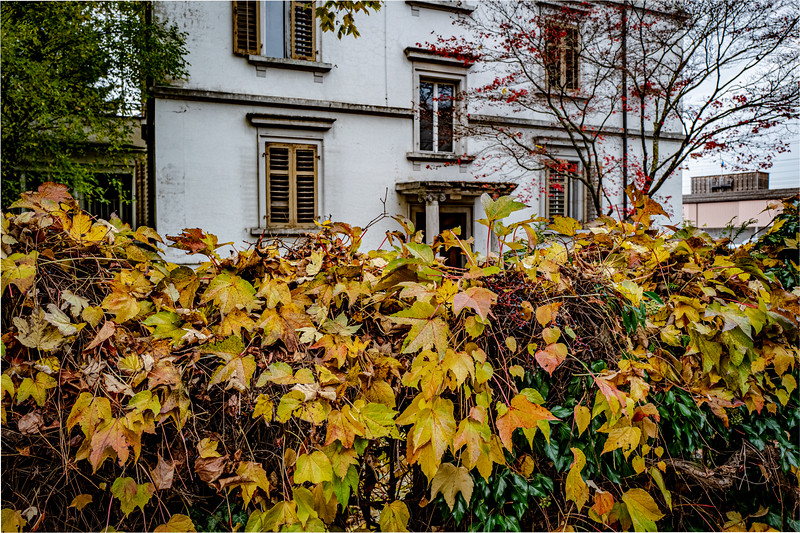 Kindergarten Lost Place--14.jpg