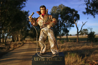 Elvis Presley on the road near Morongla Creek...June 2005