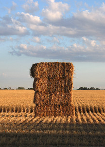 Haystack near Koorawatha...November 2007